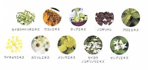 LUXE(ラグゼ)シャンプーに含まれている10種の植物エキス